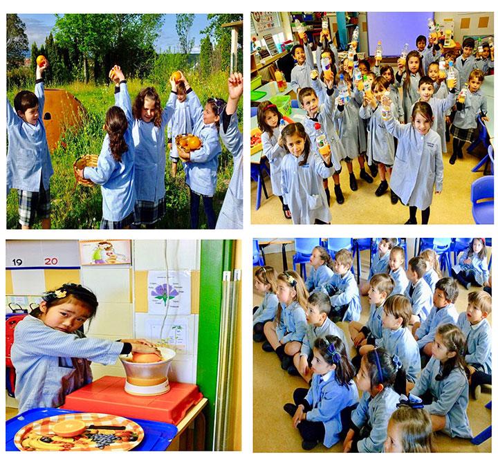 3º de Educación Infantil descubre el mundo de las plantas.
