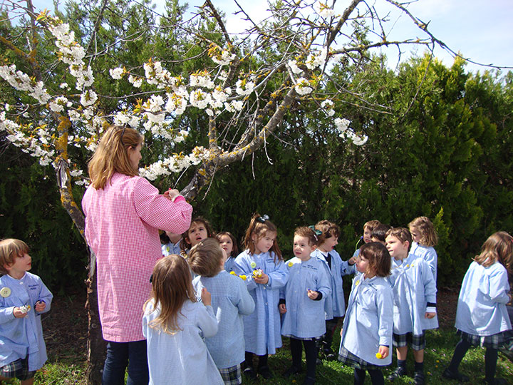 Fiesta de la primavera en Infantil.