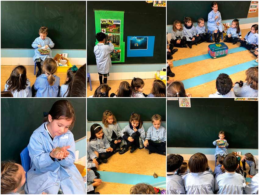 3º de Infantil estudia el mundo animal en inglés